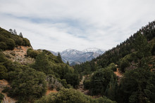 View Of Green Forest And Snowy Mountain Peaks In Angeles National Forest, California