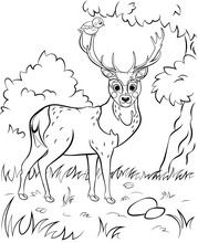 Coloring Page Outline Of Cute Cartoon Deer. Vector Image With Forest Background. Coloring Book Of Forest Wild Animals For Kids