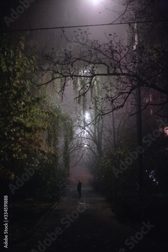 Empty foggy spooky alley street during night in city Canvas Print