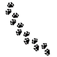 動物 犬猫 足跡 複...