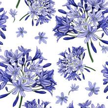 Seamless Pattern. Blue Agapant...