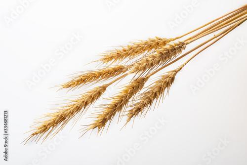 Spighe di grano mature Tapéta, Fotótapéta