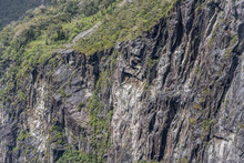 Shining Black Rocks Of Cliff Face And Lush Vegetation On Fjord Shore,  Milford Sound, New Zealand