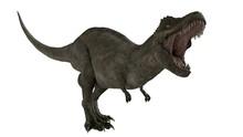 3d Rendered T-rex Tyrannosaurus Rex