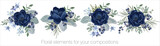 Fototapeta Kwiaty - Vector floral set with leaves and flowers. Elements for your compositions, greeting cards or wedding invitations. Blue anemones
