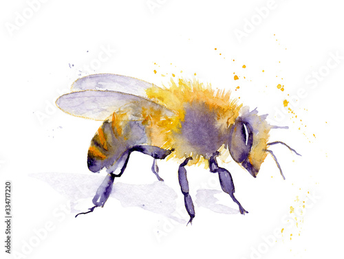 watercolor drawing of an insect - bee from splashes Canvas Print