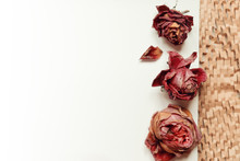 Three Dried Roses Background T...