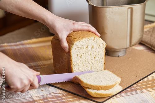 Fototapeta Hostess cuts loaf of bread with big knife