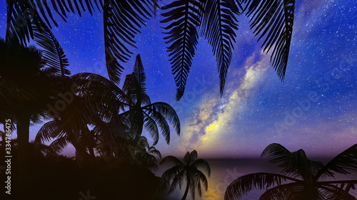 Obraz palm trees, sunset and the starry sky 3d rendering - fototapety do salonu