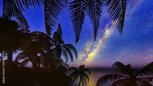 Fototapeta palm trees, sunset and the starry sky 3d rendering obraz