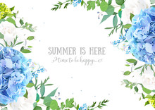 Summer Botanical Vector Design Banner