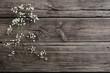 gypsophila flowers on old wooden background