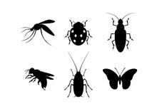 Insect Black Silhouette Icon S...