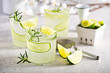 canvas print picture Cucumber gin gimlet cold and refreshing spring cocktails