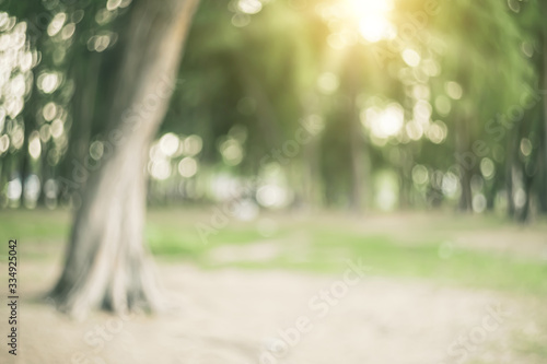 Blur nature green park with sun light abstract background. Fotobehang