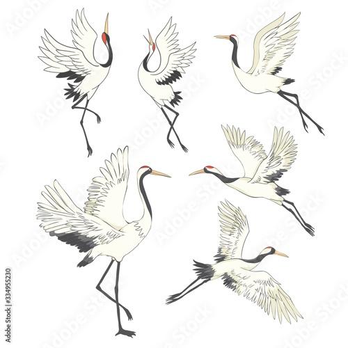 Naklejki żurawie  set-of-birds-crane-stork-heron-vector