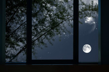 Bright Moon And Stars With Bamboo Tree In Window View