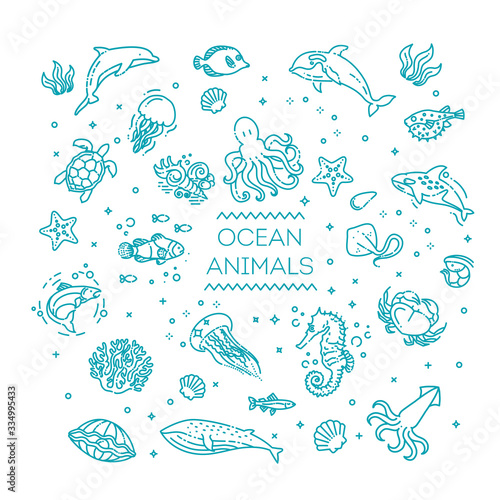 Photo Set of sea or ocean animals icons.Vector illustration
