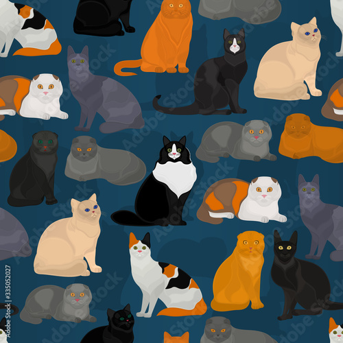Fotografie, Obraz Seamless vector pattern with different cats on a dark blue background