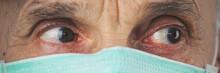 Close-up Head Portrait Of Elde...
