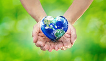 Earth Heart In Hands On Green...