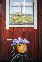 Vintage Bike With Flowers In The Basket In Front Of An Old Cottage