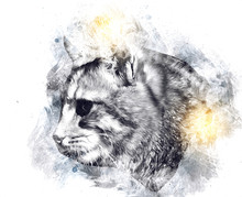 Cat Drawing Illustration Art V...