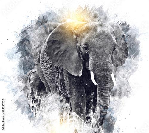 Photo Elephant art illustration retro vintage old