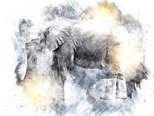 Elephant Art Illustration Retr...