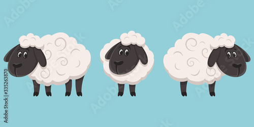 Fotografía Set of sheeps in different poses. Farm animals in cartoon style.