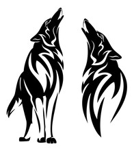 Howling Wolf Black And White V...
