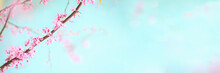 Abstract Spring Banner Of Beau...