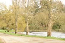 Village De Cheix En Retz Dans Le Département De La Loire Atlantique Et Sa Rivière L'Acheneau En Crue Et Qui Déborde Le Long Du Rivage En Créant Des Paysages Sublimes De Berges Inondées Et De Barques