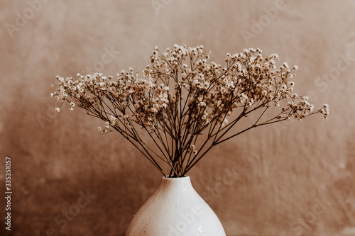 Fototapeta White wild dried flower in white ceramic vase closeup on brown background obraz