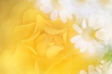 黄色いバラのアレンジ...