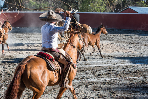 Fototapeta Montando a caballo obraz