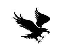 Eagle Logo.hawk Logo.creative Eagle