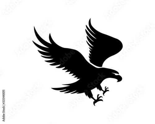 Obraz na plátně eagle logo.hawk logo.creative eagle