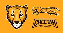 Cheetah Vector Art