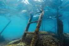 Ocean Stairs Into The Water. Underwater Scene Of Old Stairs With Shells, Water   And Coral Reefs.