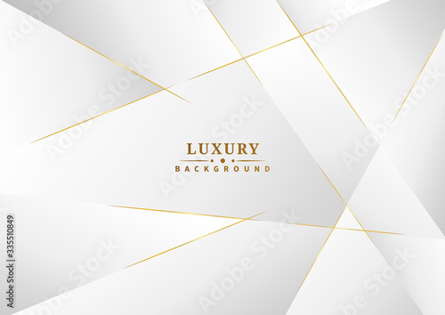 Carta da parati Abstract template white and gray color luxury background design