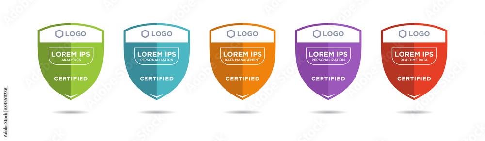 Fototapeta Set of company training badge certificates to determine based on criteria. Vector illustration certified design.