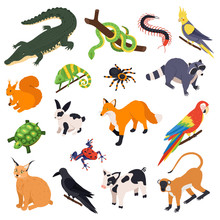 Exotic Pets Isometric Set