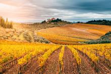 Chianti Region, Tuscany, Italy...