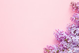 Fresh branches of purple lilac blossoms on pink table background. Pastel color. Empty place for inspirational, happy text, lovely quote or positive sayings. Flat lay. Top down view. Closeup.