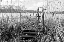 Bridge On A Lakeside Surrounded With Reeds