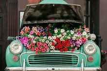 Mint Retro Car With Flowers Under The Hood