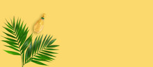 Minimal Tropical Green Palm Le...