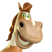 Horse Cartoon In Id Profile Po...