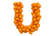 Letter U From Oranges, 3D Rend...